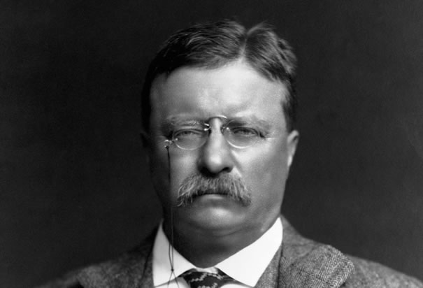 Teddy Roosevelt - mason
