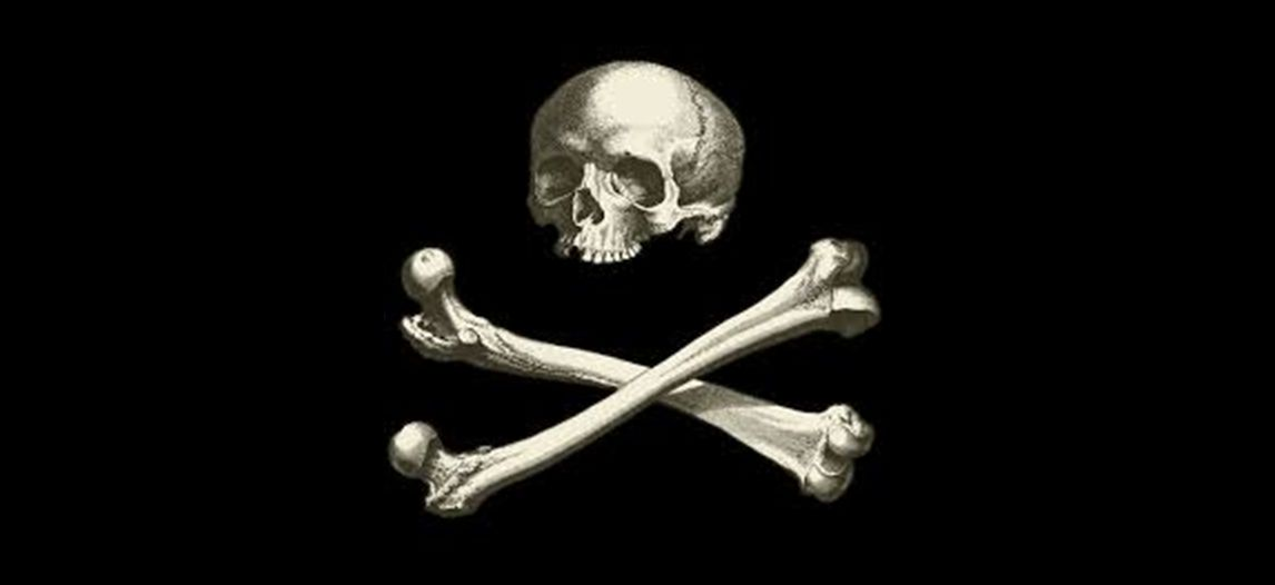 Czaszka i kości